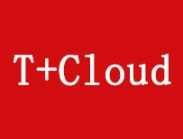 畅捷通T+ Cloud